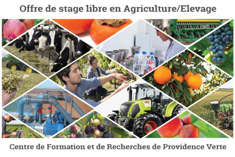 Stage libre en Agriculture-Elevage