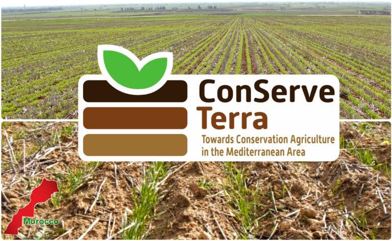 Le projet ConserveTerra: Surmonter les barrières physiques et mentales pour développer l'agriculture de conservation en Méditerranée